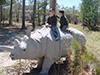 Dixon rhino 1.jpg (40438 bytes)