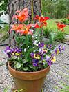 flowerssilk.jpg (39721 bytes)