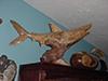 xmas06-shark-chinaberry.jpg (120462 bytes)