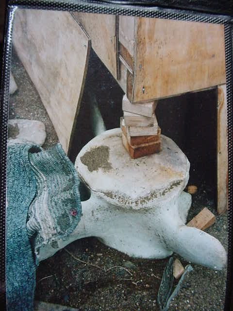 Alaskan native eskimo ivory bone carvings page